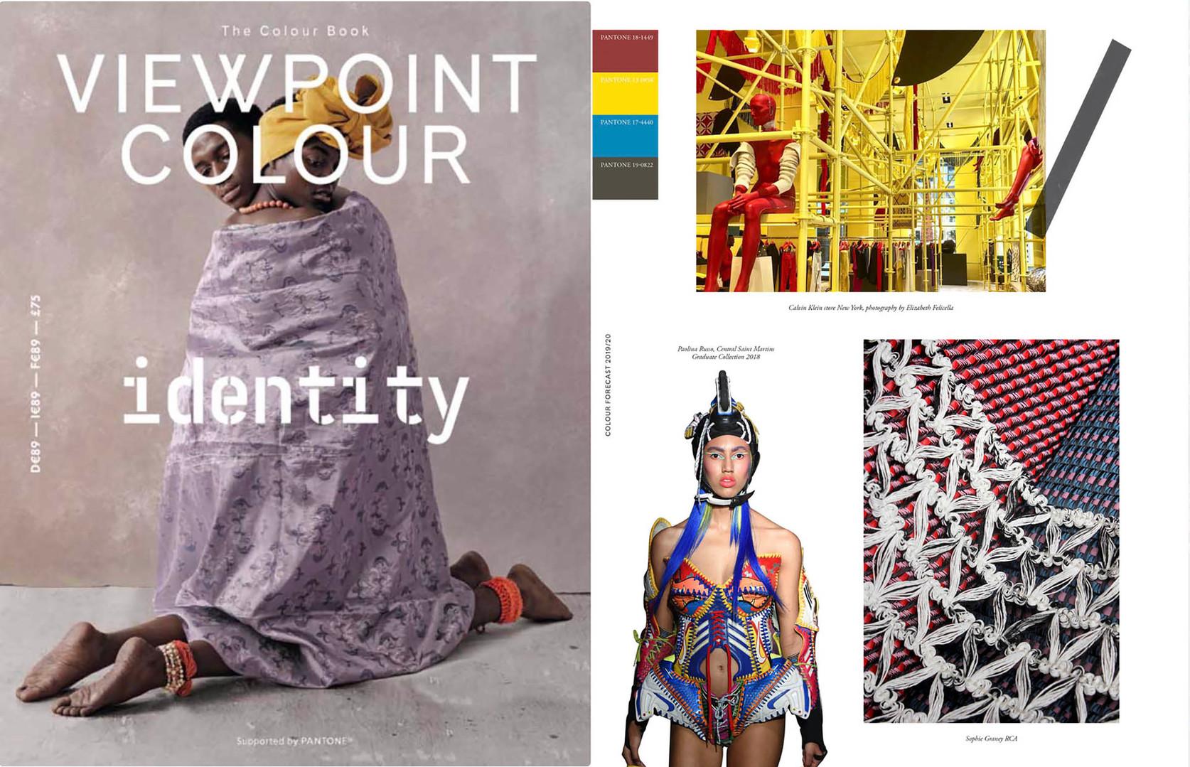 viewpoint colour.jpg