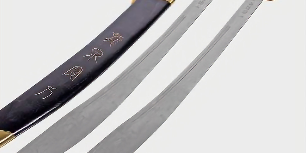 Sword Training (The Dao) with John Palmeri