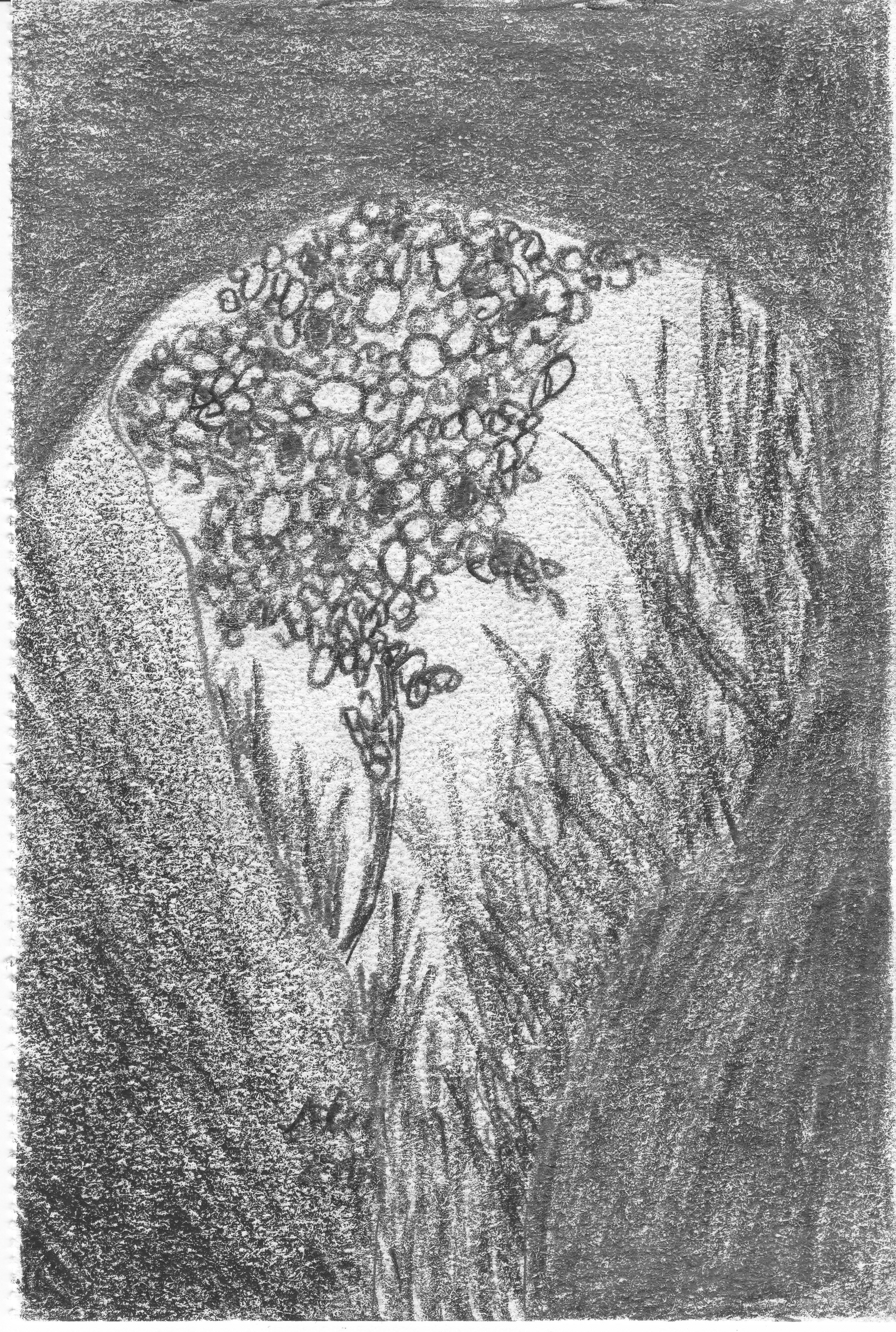 Blick_aus_der_Höhle;_Bleistift;_2016;_imachd.