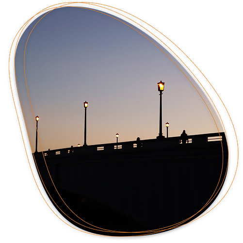 Connect your street lighting to te Wize network.