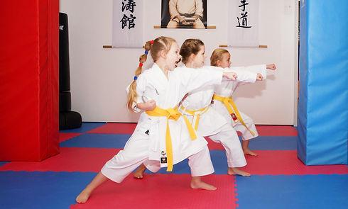 Karate%2520Wix_edited_edited.jpg