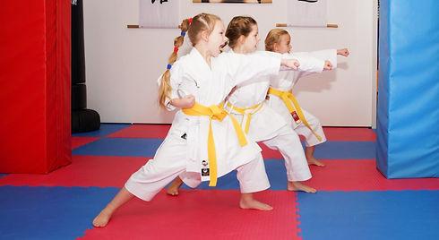 Karate%25252520Wix_edited_edited_edited_
