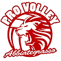 Pro Volley Abbiategrasso.png