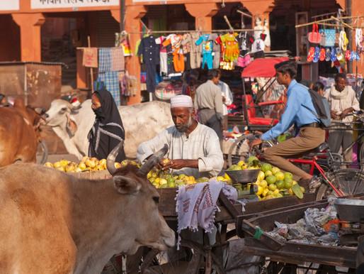 Walking Tour of Jaipur
