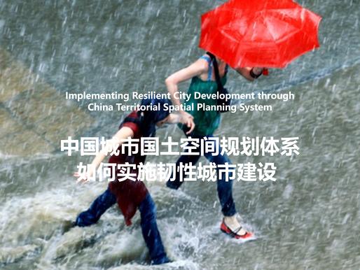 南科创新CEO 叶祖达博士应邀在上海和北京韧性城市建设研讨会发言