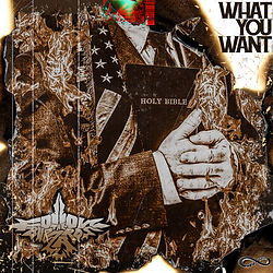 What You Want Cover.png