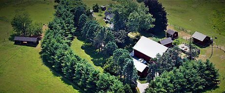 Shady Pines Farmstead