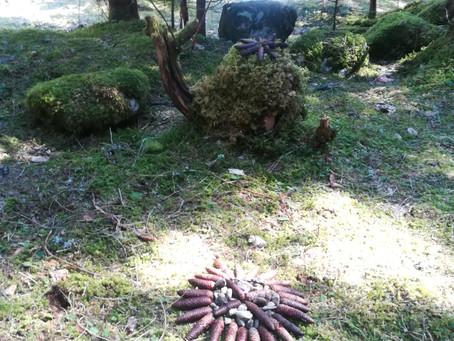 Balade en forêt, de drôles de personnages apparaissent parfois..... Un bel escargot....