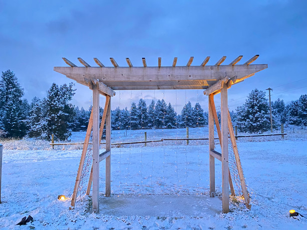 WinterWonderland13.jpg