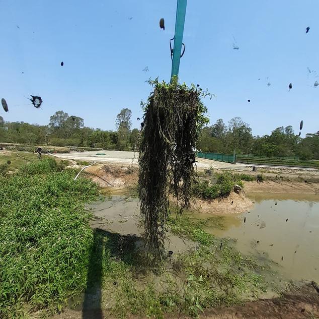 Desilting your dam with Bonelli plant Hire Long Reach Excavator