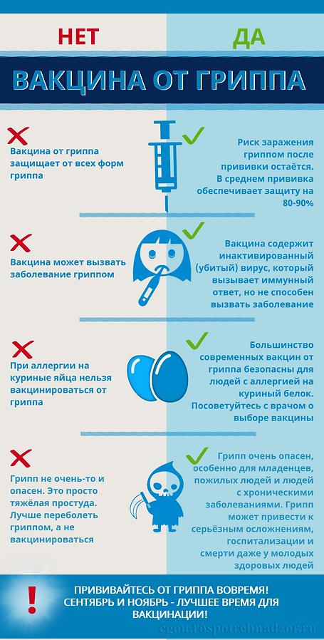 ИНФОГРАФИКА Вакцина от гриппа.png
