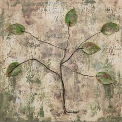 sognando un albero