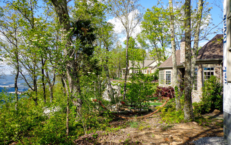 SCA Website 2021 - Brow Wood - Homes-16.