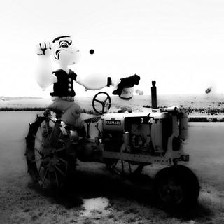Gentleman Farmer