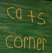 Cats Corner  School Store