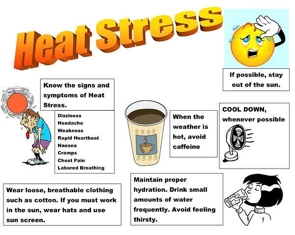 636064491751892606-142241541_heat-stress