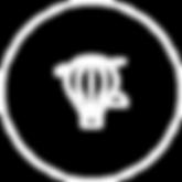 icone PERSONALIZAÇÃO.png