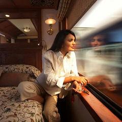 Serviços_6._Trens_maharajas-express-trai