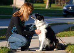 Dog Walker Indianapolis