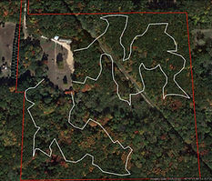 archery club course white trail.jpg