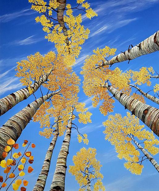 Aspen Sienna 48 x 40 web.jpeg