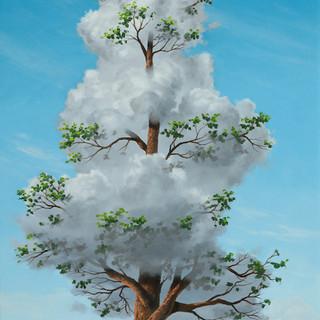 Evergreen Cloud