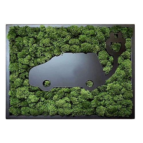 Icelandic Moss Frame