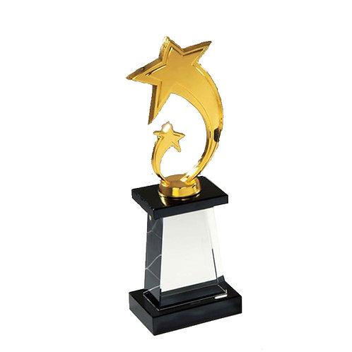 Crystal Star Trophy - 3