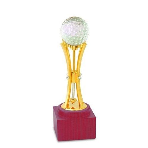 Fancy Cricket Trophy