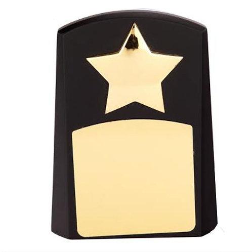 Star Performer Awards