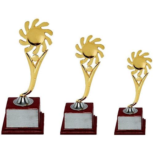 Attractive Metal Trophy