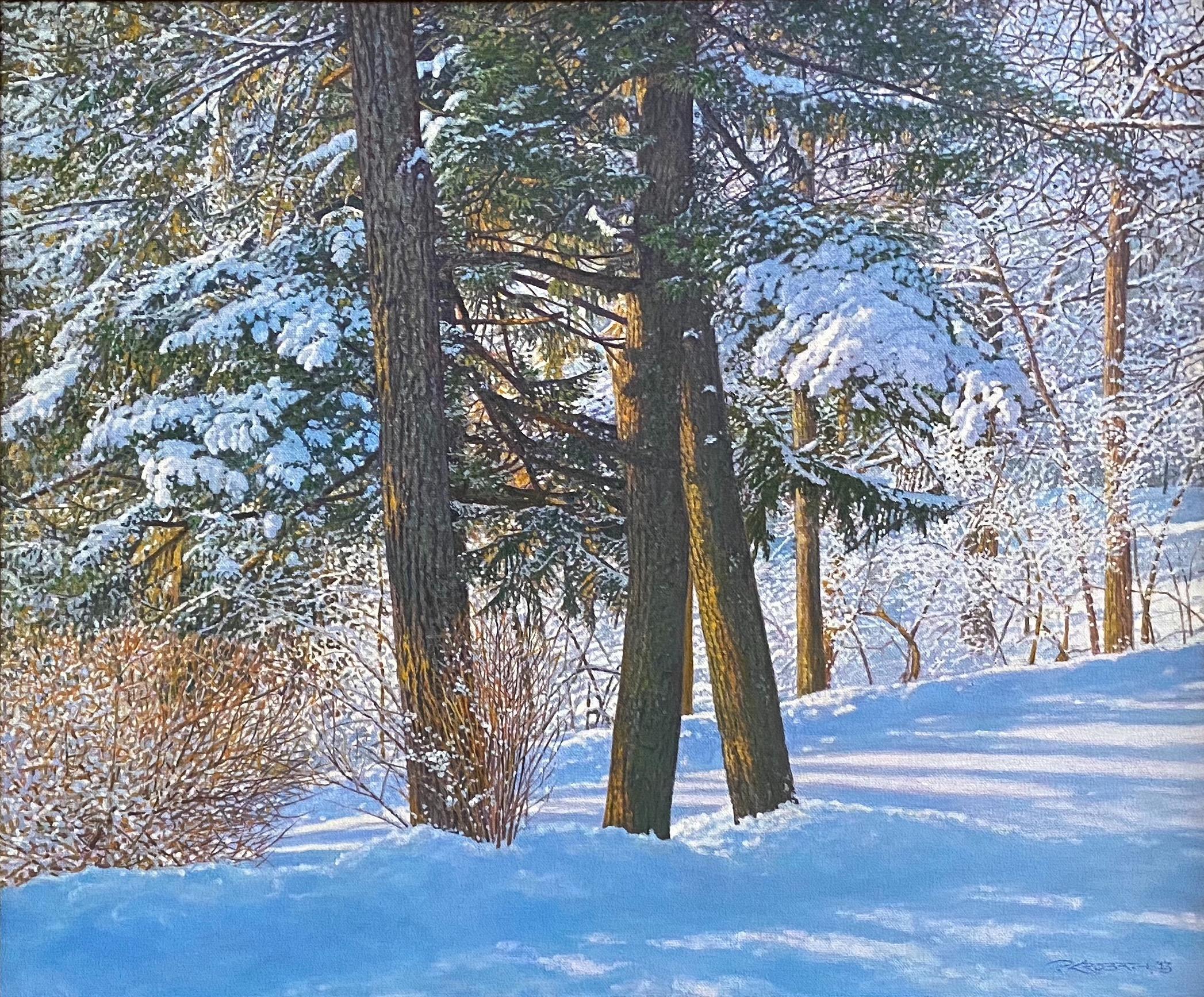 Cedars in the Snow