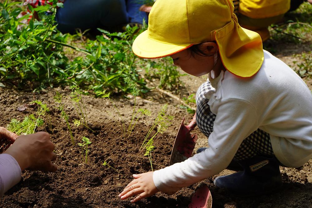 菜園や森など本物の自然に触れる