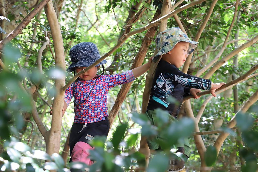幼少期に自然体験が大切な理由
