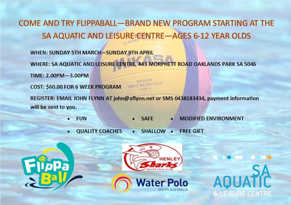 Come and Try Flippaball