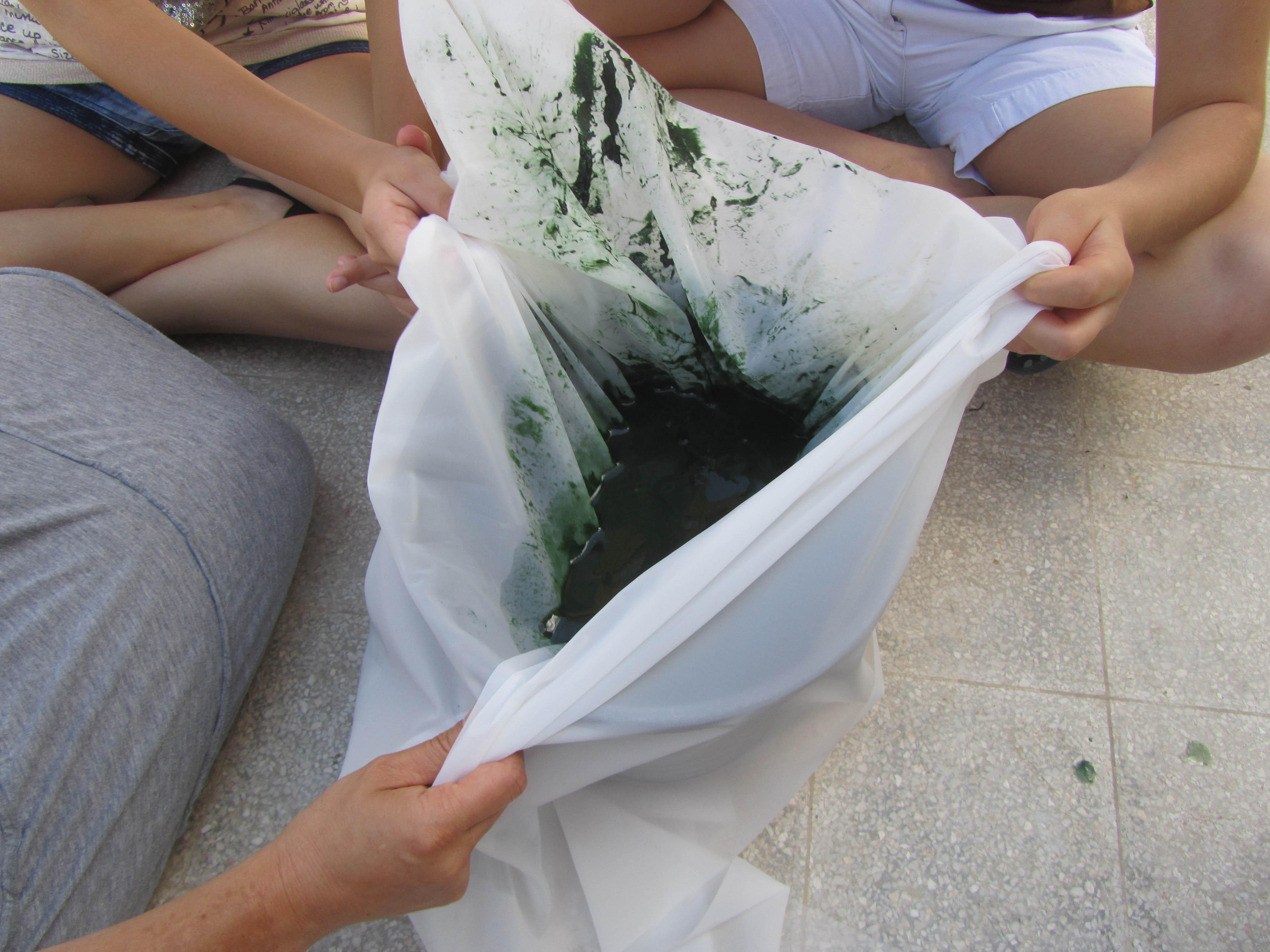 Spirulina harvesting filtering cloth