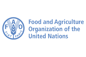 F.A.O Logo