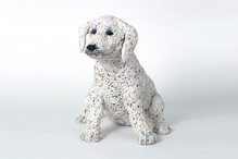 Elvin - First Dogs Series