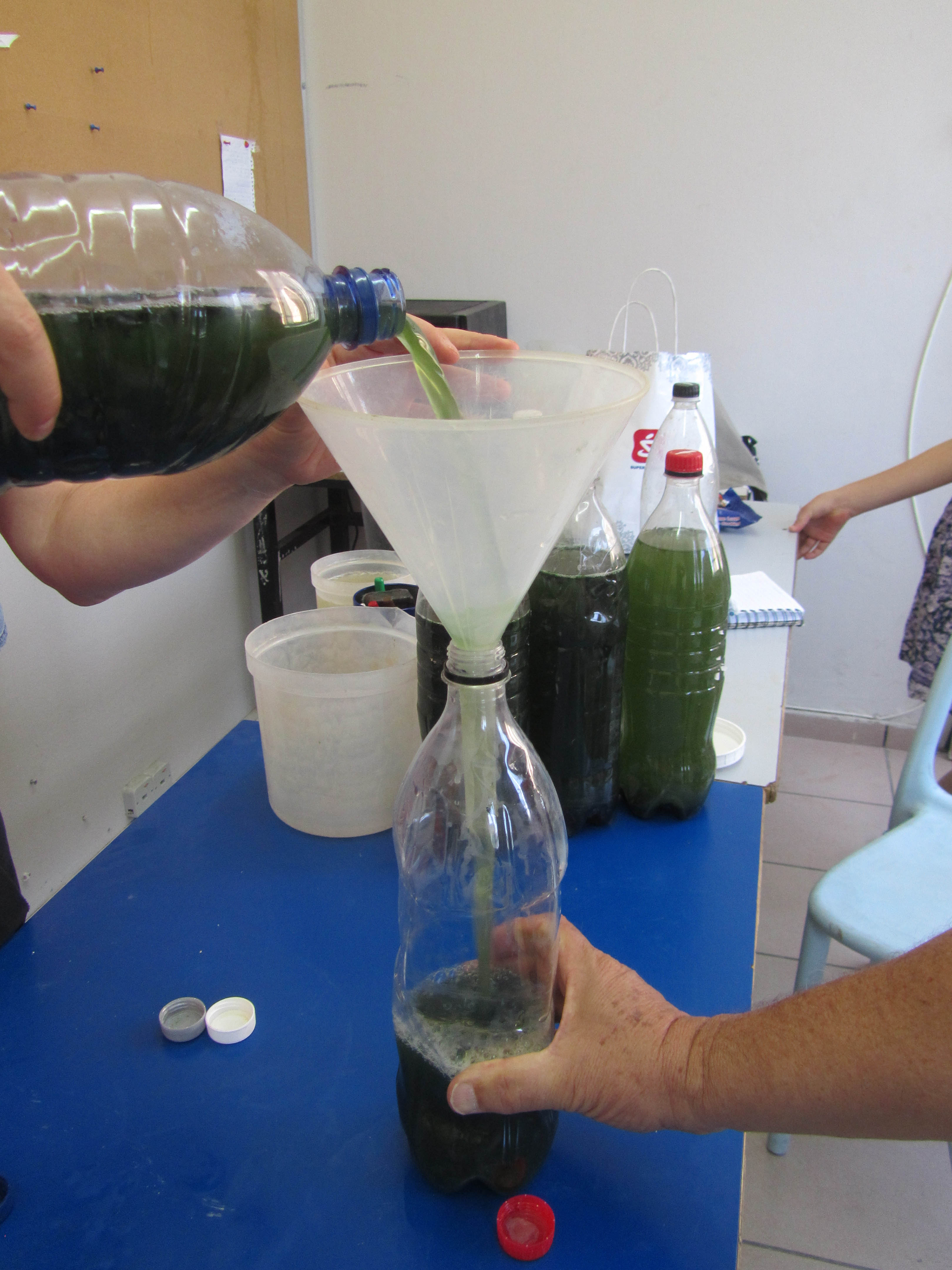 Mixing Spirulina, Salts and Minerals