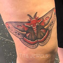 Moth tattoo by Tita Jewels