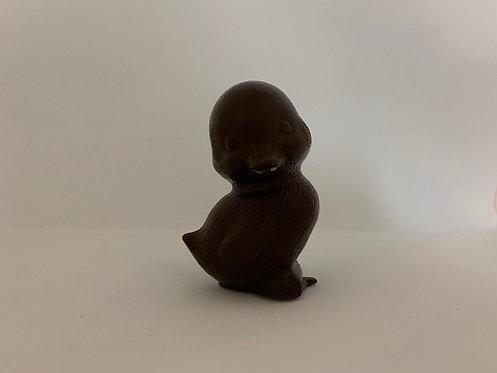 Poussin chocolat 70% de cacao