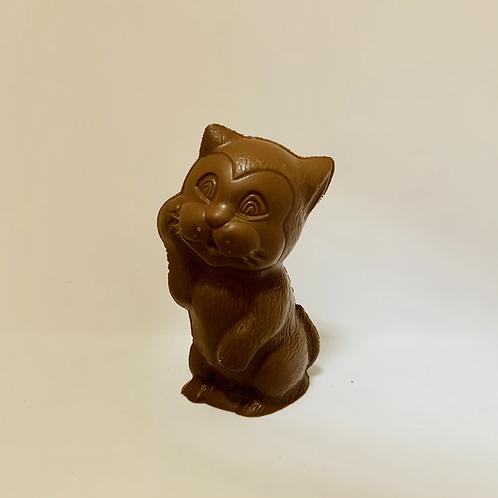 #4 petit chat (Cueillette à la boutique)