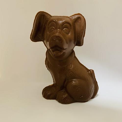 #8 chien Dalmatien  (Cueillette à la boutique)