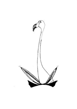 calm flamingo