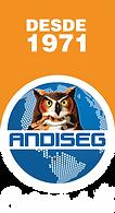Logo andiseg cdt blanco.png