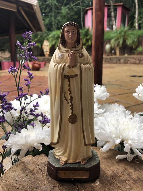 Nossa Senhora Rosa Mística