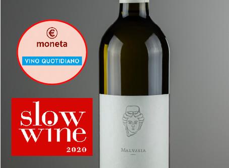 Guida Slow Wine 2020