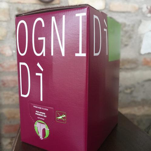 BAG IN BOX 5 LITRI ROSSO
