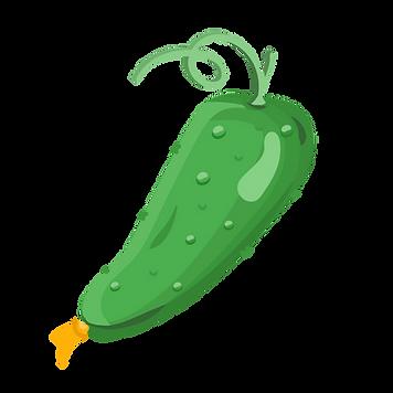 cucumber-09.png
