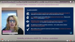 Online konference a webináře